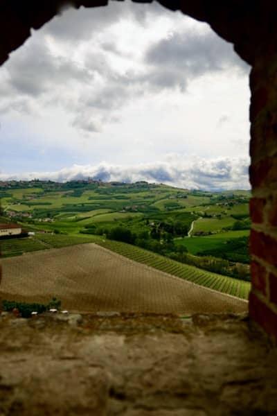 Widok z okna Zamku Grinzane Cavour na okoliczne winnice